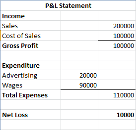 So, A Pu0026L Statement Can Have Both Profit And Loss Shown On The Same  Statement.  Pnl Statement