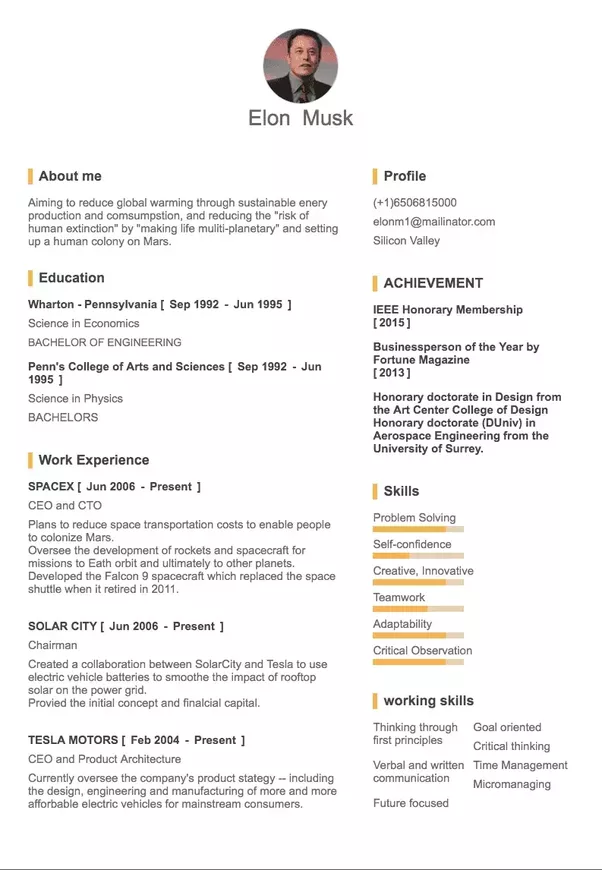 Awesome!  Elon Musk Resume