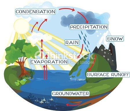 How To Design A Labelled Diagram Of The Water Cycle Quora