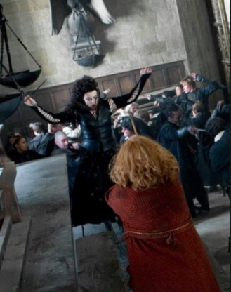 In the final battle, Molly and Bellatrix duel  Why did