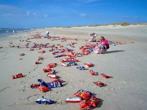 As You Can See Humans Never Get Tired Of Free Stuff Even If Its Found On The Beach