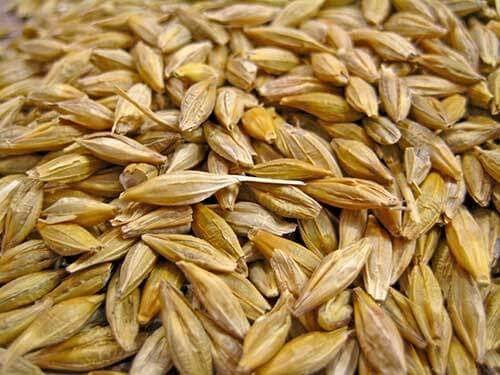 How To Prepare Oats In Hindi