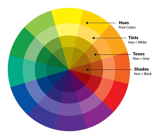 Look At The Following Colour Wheel