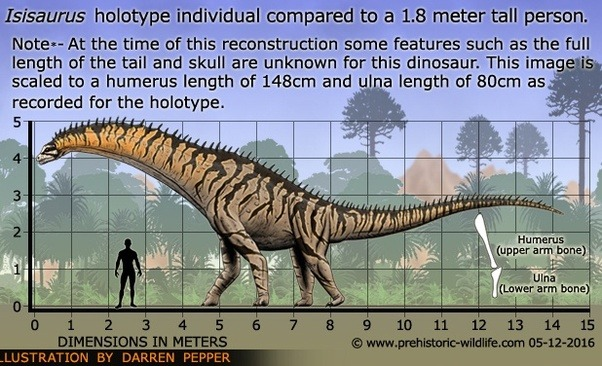 Jainosaurus Is A Large Titanosaurian Dinosaur Of India And Wider Asia Which Lived In The Maastrichtian Approximately 68 Million Years Ago