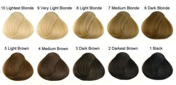 5 Is An Example Of Light Brown It S Not As Most Would Ume But That And Noticeably Darker Than Strawberry Blonde