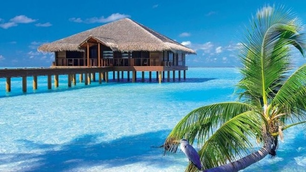 How Costly Is Visiting The Maldives From India Quora