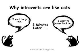 dating tips for introverts without friends quotes