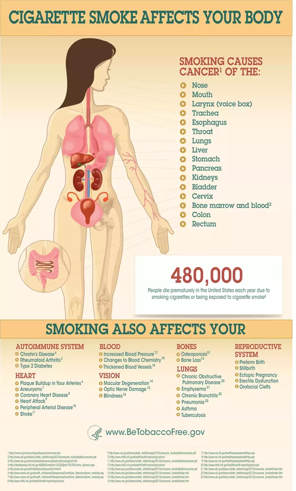 How much can one cigarette per day harm our body? - Quora