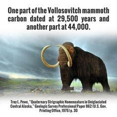 hvordan forklarer creationist carbon dating