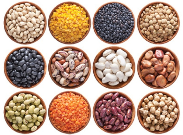 Global Leafy Green Vegetable Seeds Market 2020 Major Manuifacture –  Syngenta, Sakata, BASF, Limagrain, Rijk Zwaan – The Courier