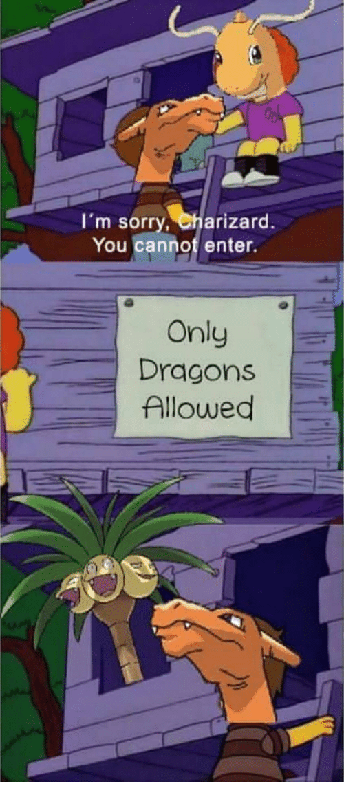 is charizard a dragon quora