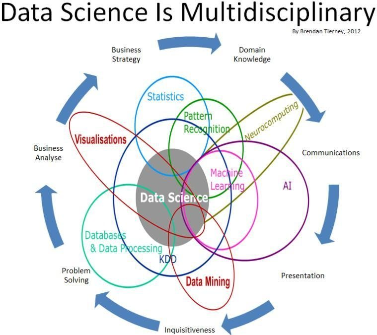What is the difference between a data scientist and a