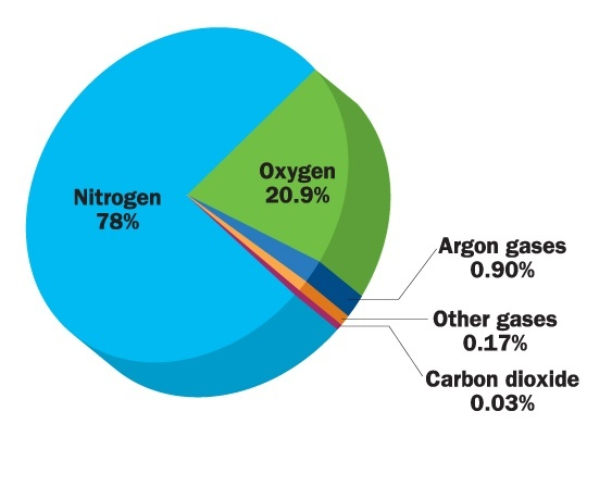 how to know if carbon dioxide is present
