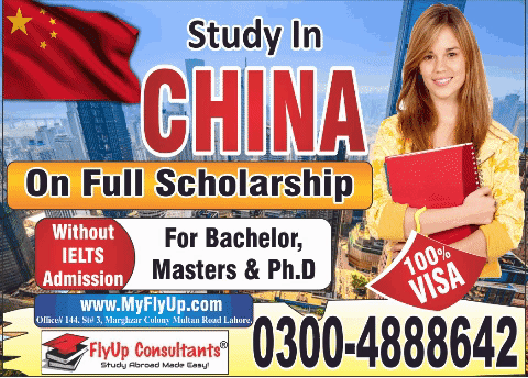 How to get an undergraduate scholarship to study in China - Quora