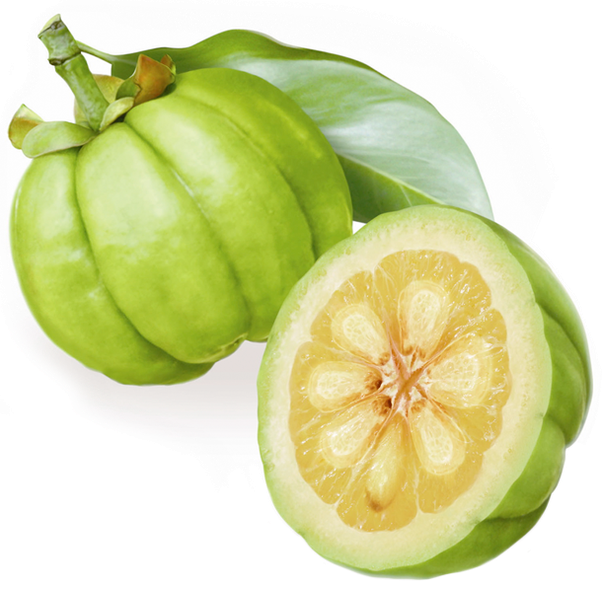 How To Find Out Where To Buy Garcinia Cambogia Fruit Quora