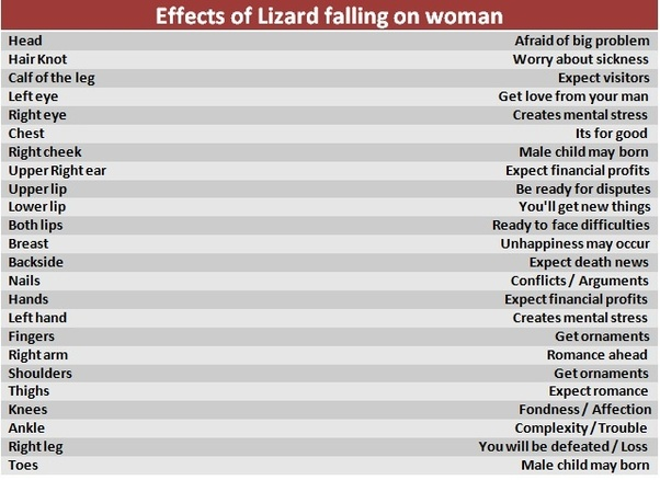 What Happens To Me As I Stepped On The Lizard With My Left Leg