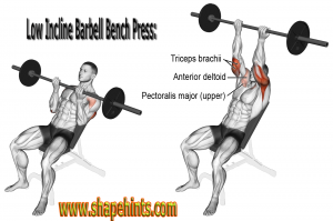 The Upper Pecs Without As Much Stress On Delts You Can Easily Do Low Incline With An Adjustable Bench Smith Machine Research Prove That Grip Your