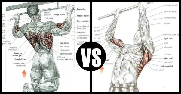 Engage The Anterior Deltoids Pectoralis Muscles Chest Triceps And Rhomboid Of Back Your Core Will Be Activate While Doing