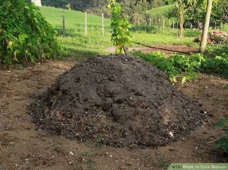 What is the difference between fertilizer and manure?