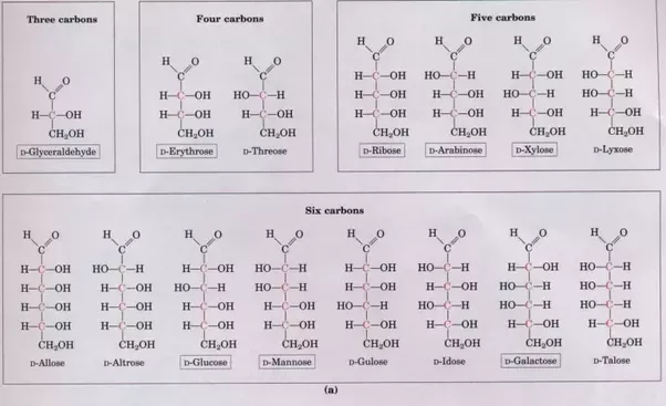 examples associated with structural isomers