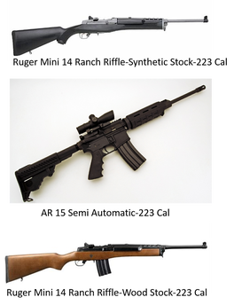 if ar 15 assault rifles are functionally identical to any semi
