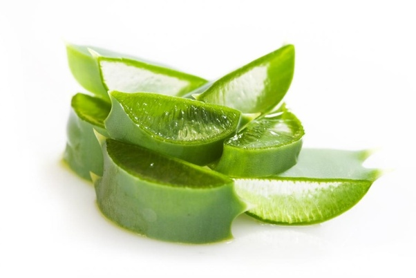 Where do you apply aloe vera gel, on a dry, or on a wet ...