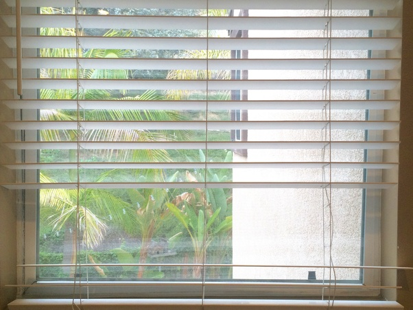 Diffe Types Of Window Blinds