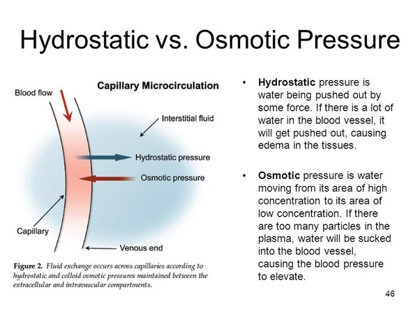 what is the mechanism by which fluid overload  eg diagram of hemodynamics