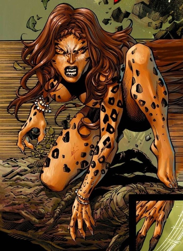Image result for Wonder Woman Cheetah