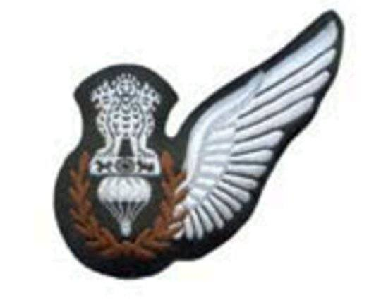What are the different badges worn by Indian Air Force