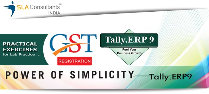 What is the difference between basic tally and professional tally
