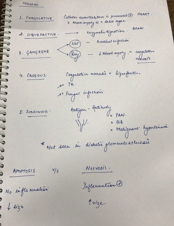 why do doctors in india have bad handwriting