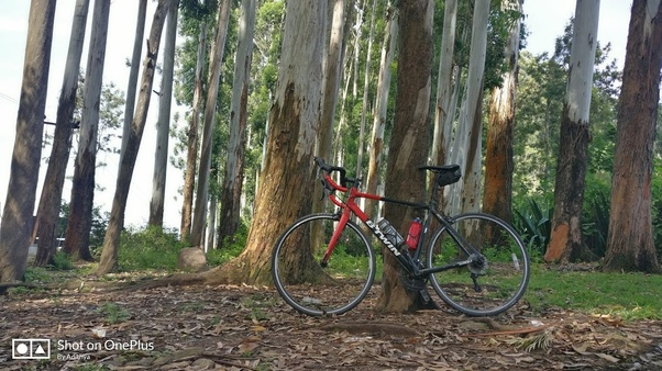 What are the drawbacks of buying a BTwin bicycle? - Quora