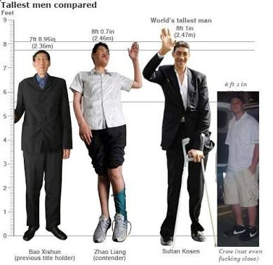 Would You Consider 61 185 Cm Tall For A Guy Quora