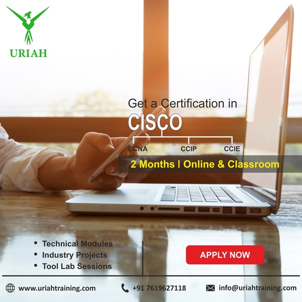 ccna course best institute in bangalore dating