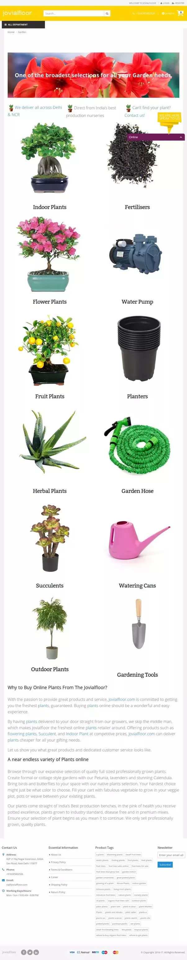 Where can I buy plants online in India? - Quora
