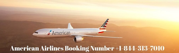 How To Find My American Airlines Ticket Number Quora