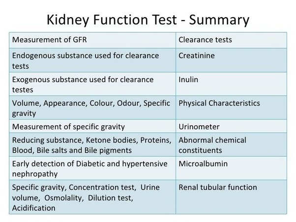 What is kidney function test? - Quora