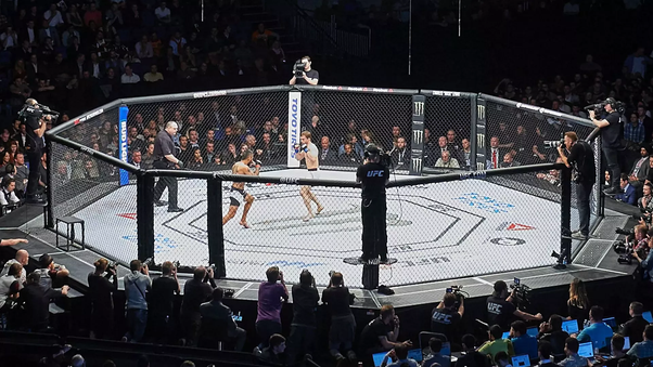 How much do MMA fighters get paid? - Quora