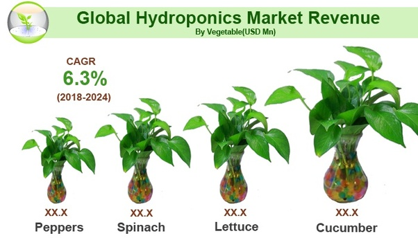 What is the global hydroponics market size? - Quora