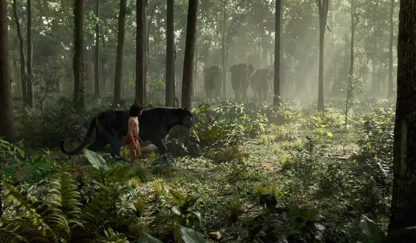 What are the key differences you expect between 'The Jungle