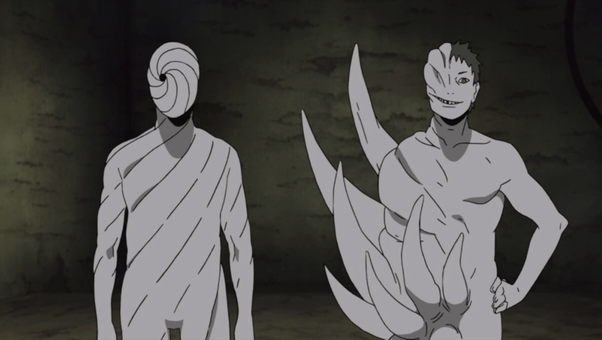 What is the difference between Black Zetsu and White Zetsu ...