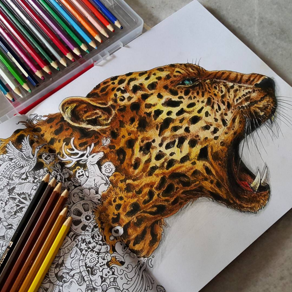 What are the best coloring books for adults Quora