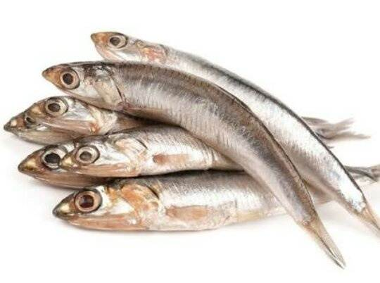 This Is Mandeli Fish It Called GOLDEN ANCHOVIES In English