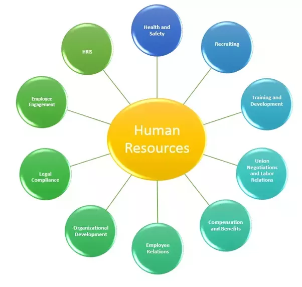 How Human Resource Management Benefits a Small Business