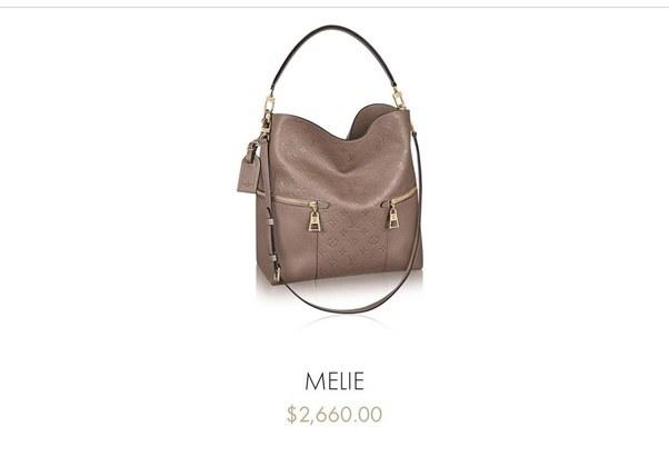 da4d27b57bc2cc Bags More Expensive Than Louis Vuitton | Stanford Center for ...