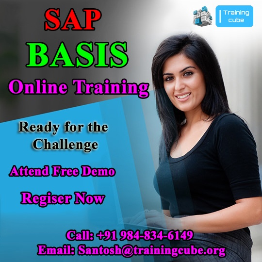 What is SAP Basis? - Quora