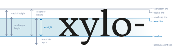 The X Height Forms Core Part Of Lowercase Letters Going From Baseline To Mean Line As You Can See In Image Below