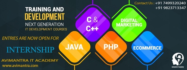 Which is the best training institute for web development in