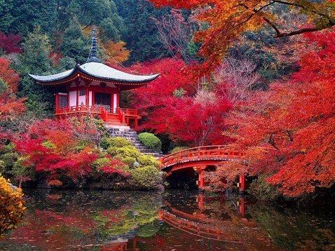 Daigoji Temple Kyoto In Autumn